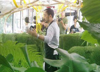 foret transformé en bus au Taiwan