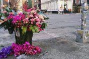 New-York , fleuriste transforme les poubelles de la ville en vases fleuris !