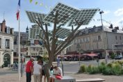 arbre solaire france