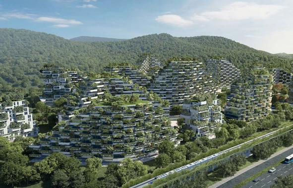 villes foret en chine pour combattre la pollution de l'air