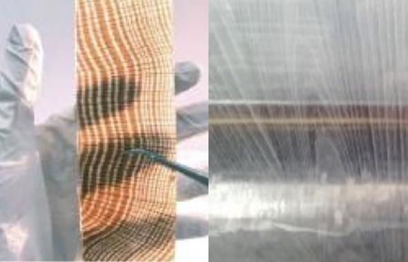bois transparent en Suède